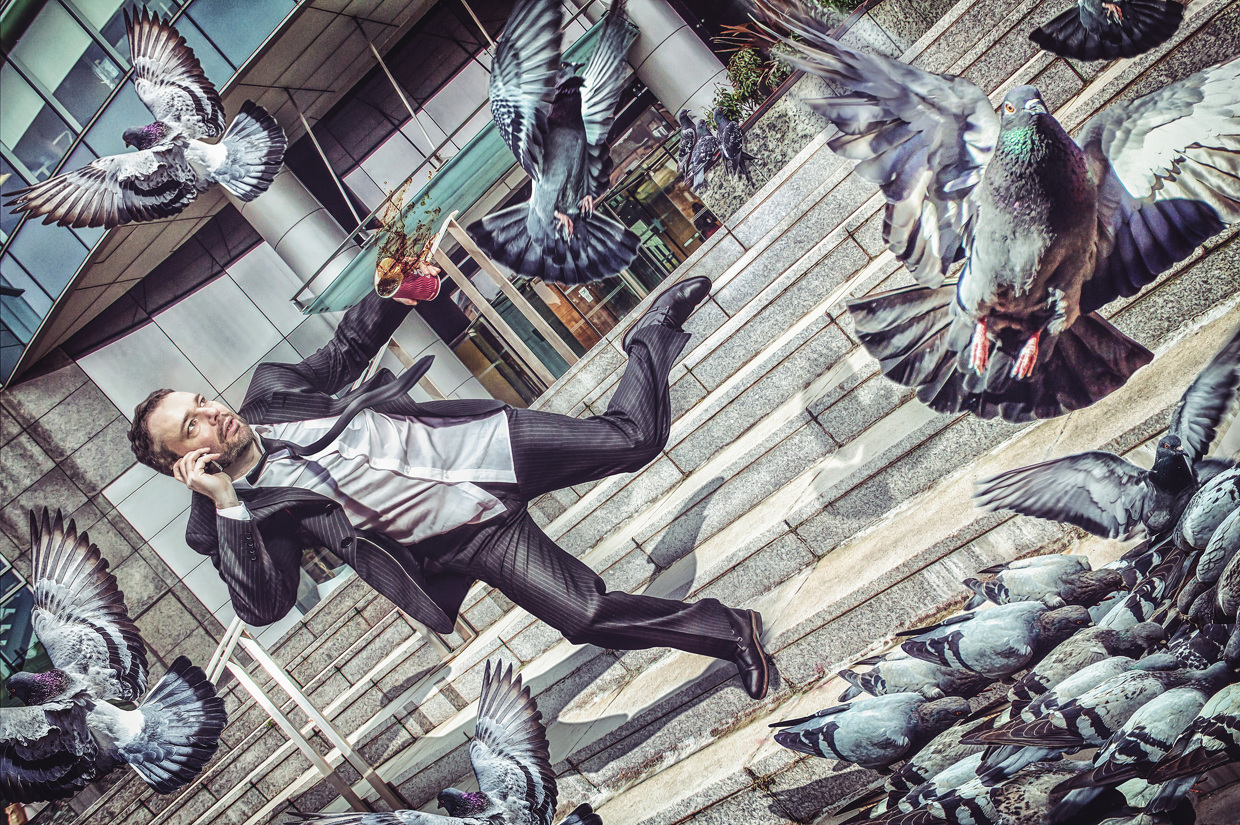 Man Tripping Down Stairs Surrounded by Pigeons - Photo by Lee Howell