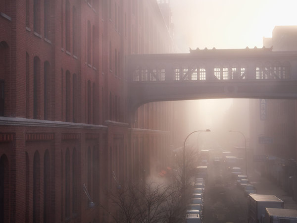 The High Line NYC - Photo by Darran Rees