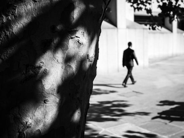 Stalker - Photo by Rupert Vandervell