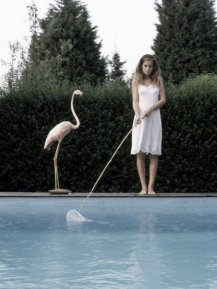 Flamingo by Pool - Me & My Pet - Photo by Liselotte Habets
