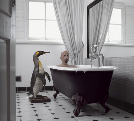 Penguin by Bath Tub - Me & My Pet - Photo by Liselotte Habets