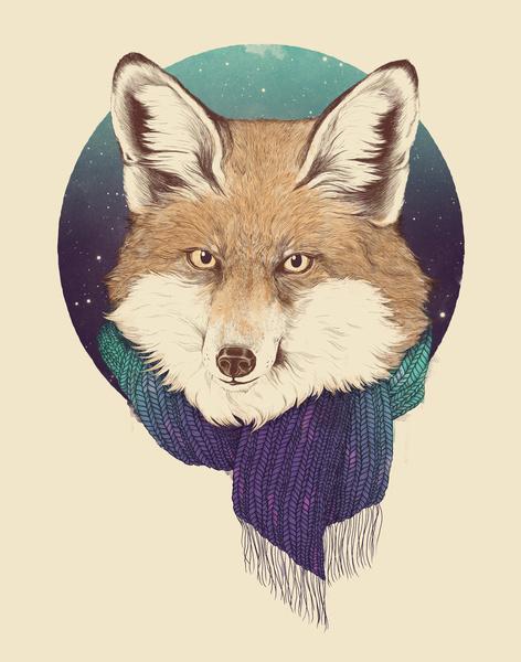 Fox - Art Print by Laura Graves