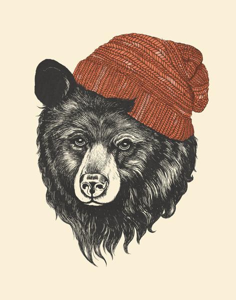 Zissou the Bear - Art Print by Laura Graves