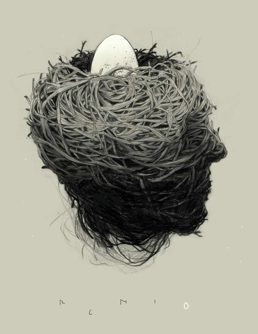 Birds Nest - Illustration by Simon Prades