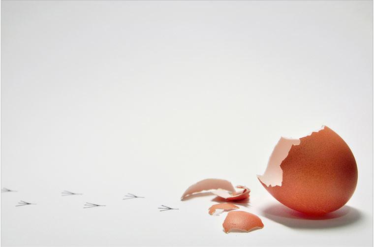 Egg with Footprints - Photo by García de Marina