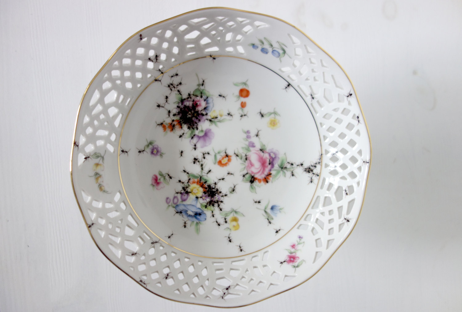 Bowl - Hand Painted Porcelain by La Philie - Evelyn Bracklow