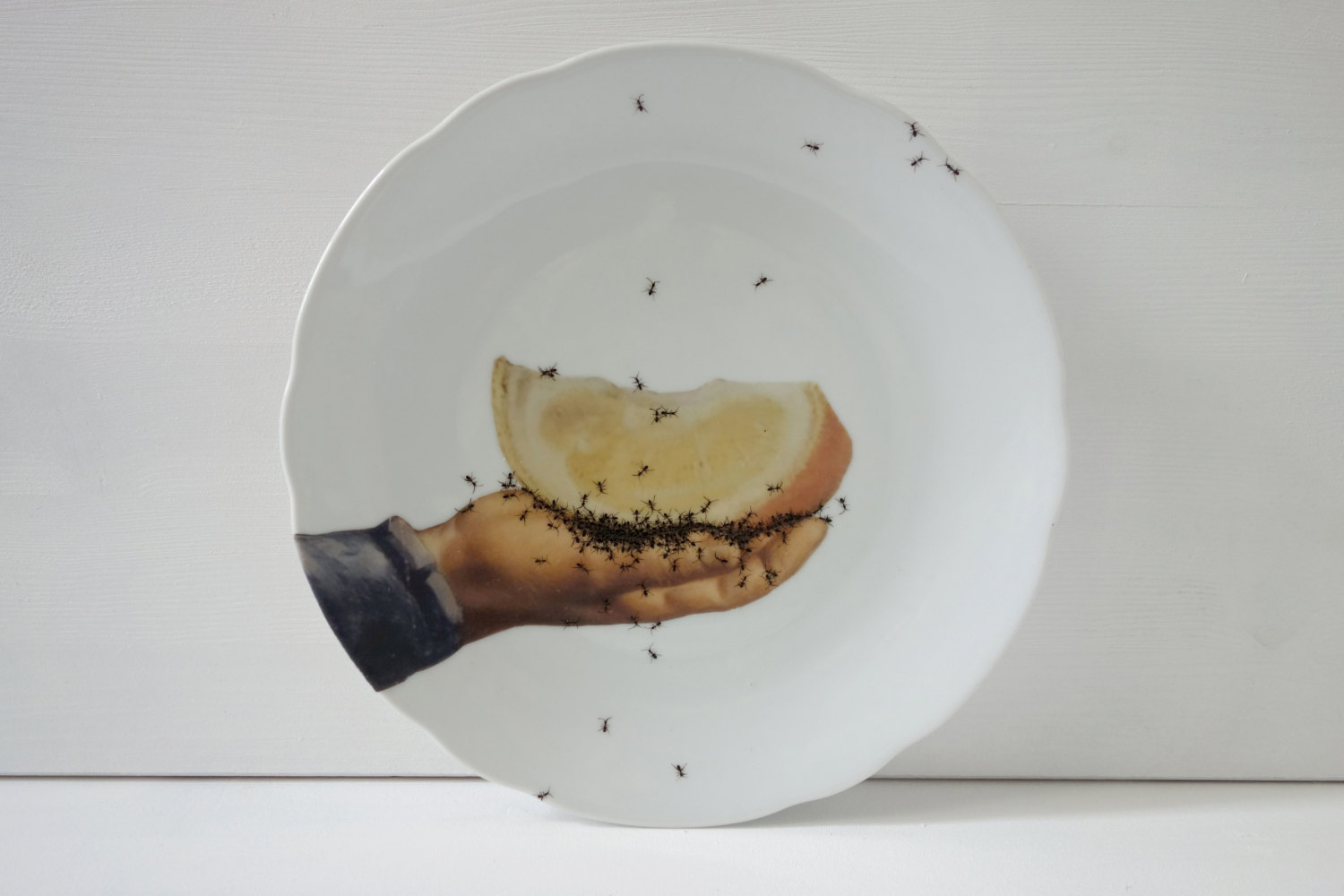 Plate 1 - Hand Painted Porcelain Plate by La Philie - Evelyn Bracklow