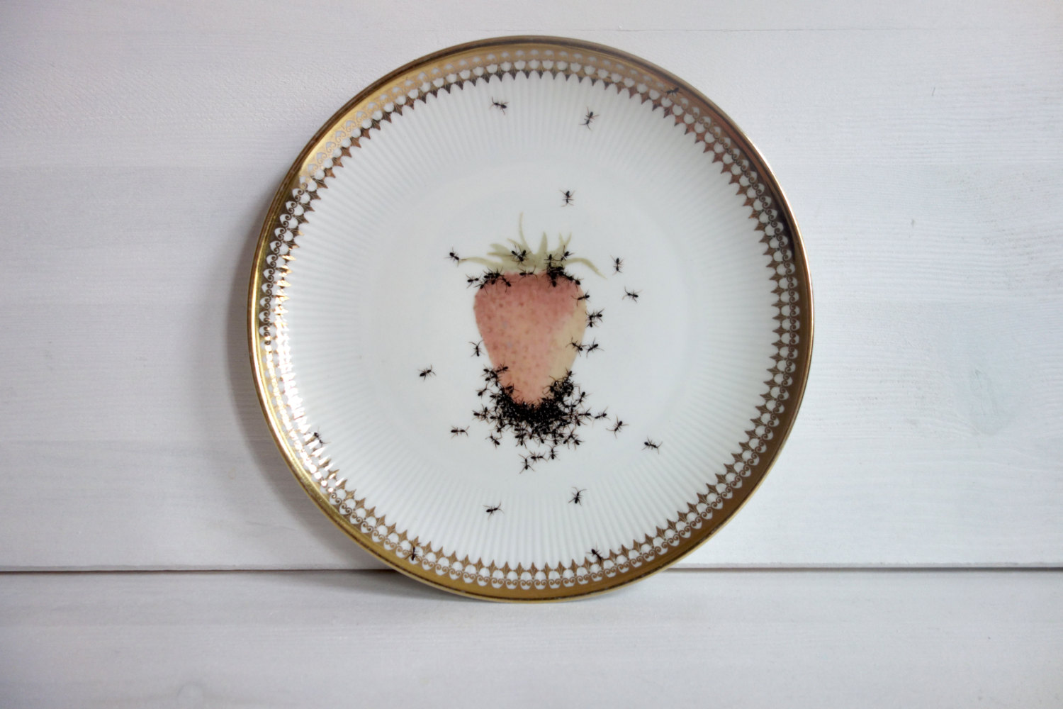 Plate 2 - Hand Painted Porcelain Plate by La Philie - Evelyn Bracklow & Hand-Painted Ants on Vintage Porcelain Plates by La Philiearthaus