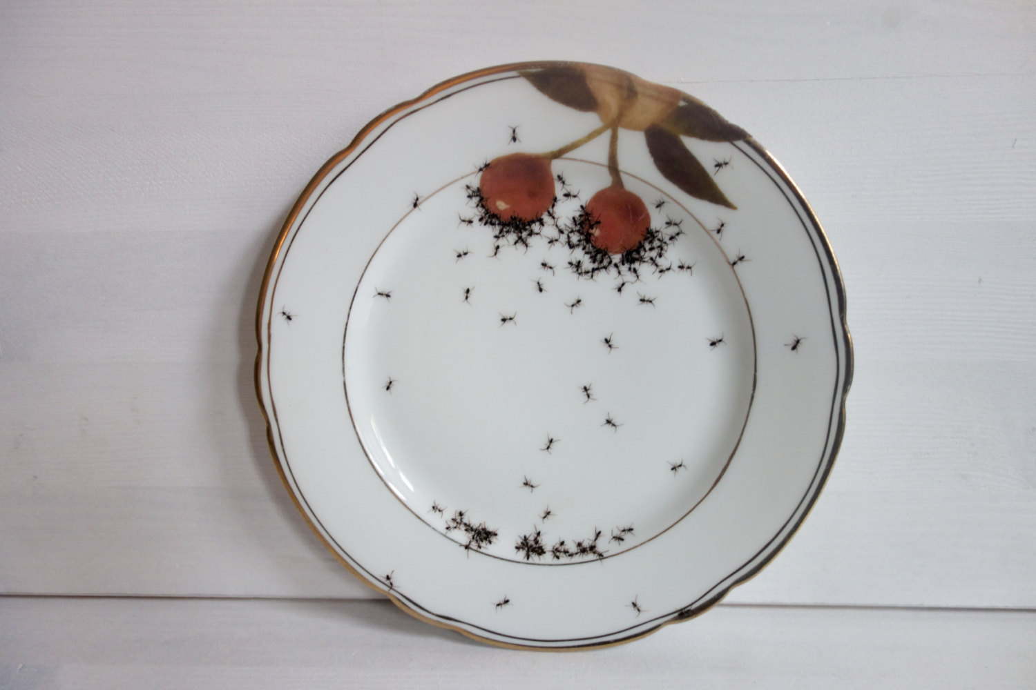 Plate 3 - Hand Painted Porcelain Plate by La Philie - Evelyn Bracklow