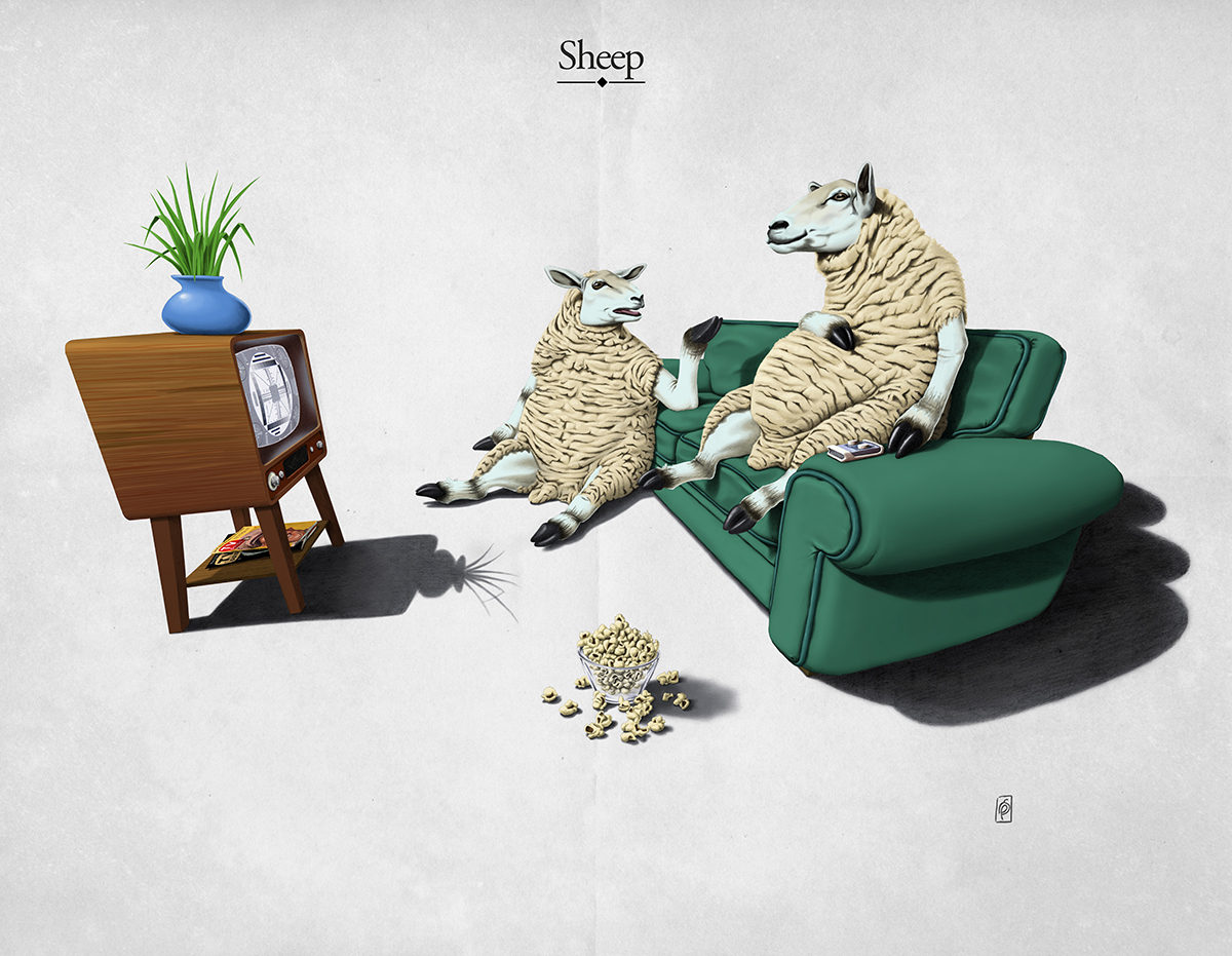Sheep - Art Print by Rob Snow