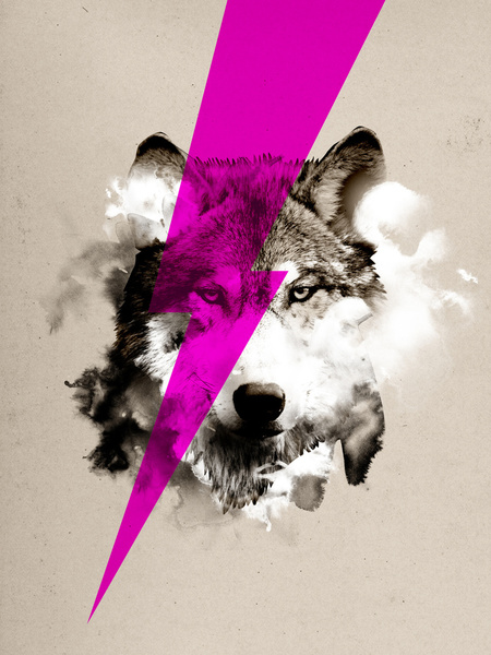 Wolf Rocks - Art Print by Robert Farkas