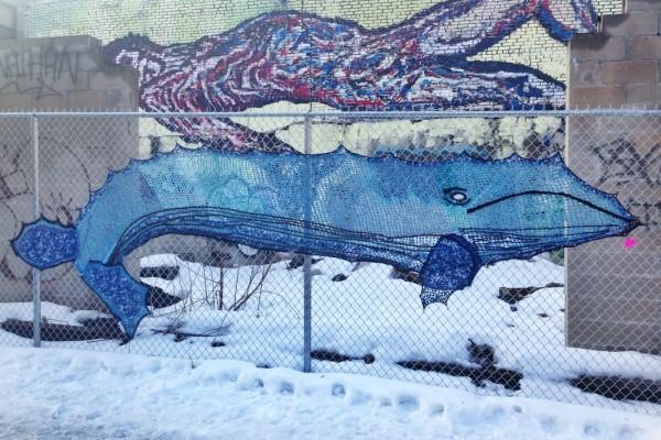 Blue Whale - Crochet Yarn Bombing - Street Art by London Kaye