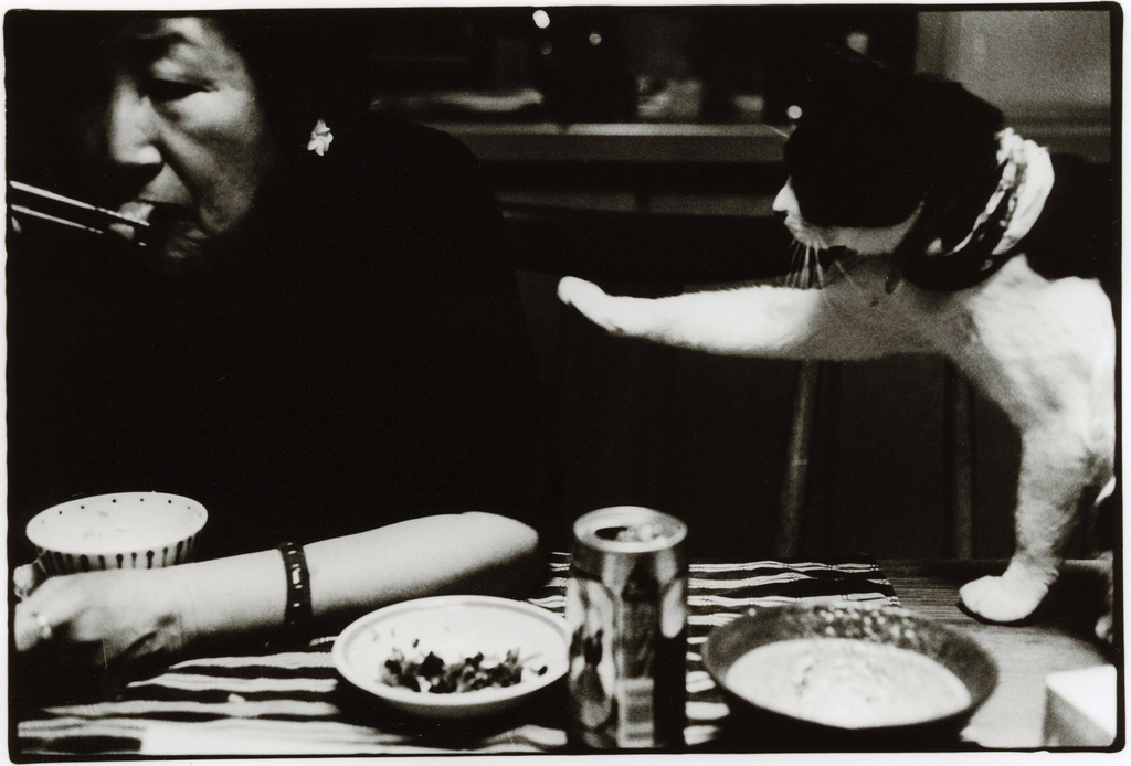 Don't Look the Other Way - Photo by Junku Nishimura