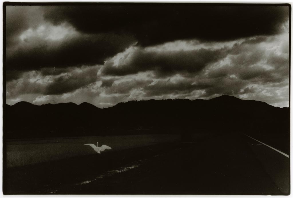 To the Sky - Photo by Junku Nishimura
