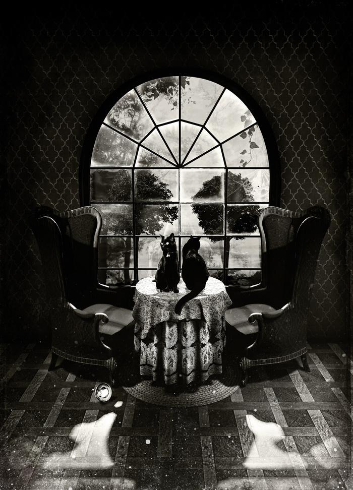 Room Skull B&W by Ali Gulec