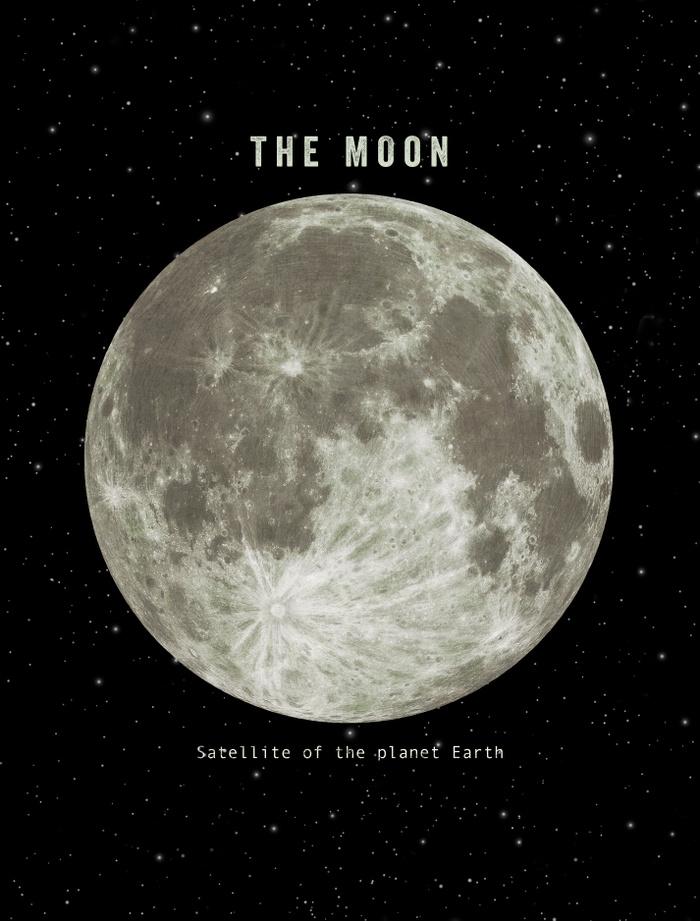 The Moon by Terry Fan