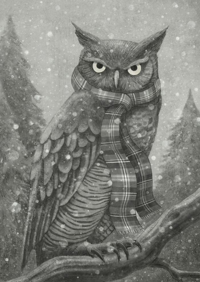 Winter Owl by Terry Fan