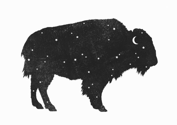 Mystic Buffalo by Terry Fan